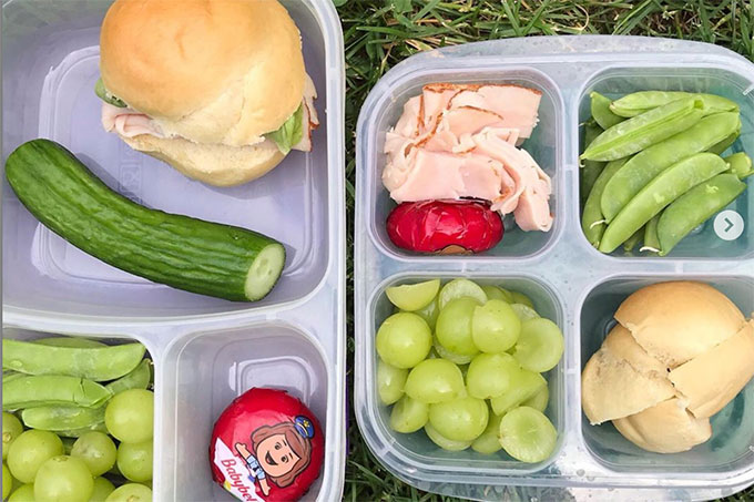 sandwich lunchbox ideas with two boxes